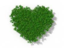 Símbolo do coração com ervas daninhas da marijuana Fotografia de Stock