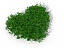 Símbolo do coração com ervas daninhas da marijuana Imagens de Stock