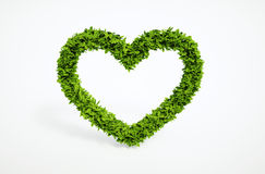 Símbolo do coração da ecologia Foto de Stock
