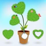 Símbolo do coração da grama do vetor Foto de Stock