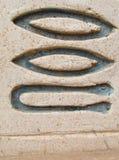 Símbolo do hieróglifo na parede imagem de stock
