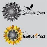 Símbolo do logotipo do girassol Imagem de Stock Royalty Free