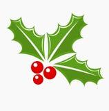 Símbolo do Natal da baga do azevinho Foto de Stock