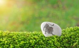 Símbolo do zodíaco do Leão na pedra imagens de stock