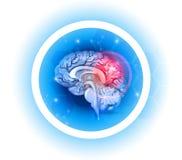Símbolo dos problemas do cérebro humano ilustração do vetor