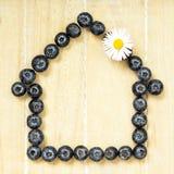 Símbolo Home feito com uvas-do-monte frescas Imagens de Stock Royalty Free