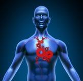 Símbolo médico das engrenagens humanas das válvulas da função do coração Imagem de Stock