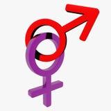 Símbolo masculino/femenino Foto de archivo libre de regalías