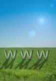 Símbolo WWW del Internet Imagenes de archivo