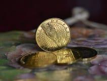 Símbolo y monedas Fotografía de archivo libre de regalías