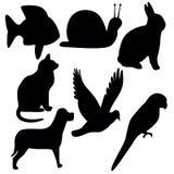 Símbolos Imagens de Stock