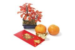 Símbolos afortunados chinos del Año Nuevo Imagen de archivo libre de regalías