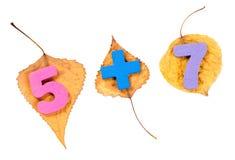 Símbolos aritméticos en las hojas de otoño aisladas en blanco Fotos de archivo
