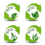 Símbolos con la hoja - iconos de la naturaleza del eco Imágenes de archivo libres de regalías