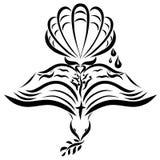 Símbolos cristianos, la paloma, la biblia, la cáscara y otras