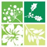 Símbolos da natureza, flores Foto de Stock