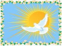 Símbolos da paz ilustração do vetor