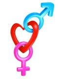 Símbolos de conexión del género de la forma del corazón de la tarjeta del día de San Valentín para los sexos masculinos y femenin Fotografía de archivo libre de regalías