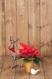 Símbolos de la Navidad Flor de la poinsetia Reno Fotografía de archivo libre de regalías