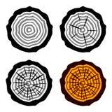 Símbolos del tronco de árbol de los anillos de crecimiento Foto de archivo libre de regalías