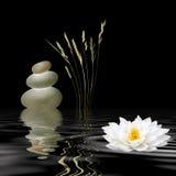 Símbolos del zen Fotografía de archivo libre de regalías
