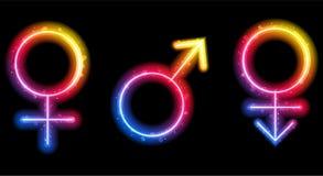 Símbolos do género do macho, da fêmea e do Transgender ilustração stock