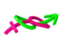 símbolos do gênero do casamento 3d Imagens de Stock Royalty Free