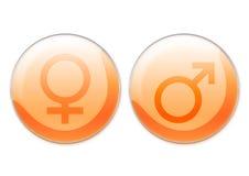 Símbolos femeninos y masculinos ilustración del vector