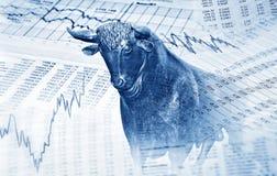 Símbolos financeiros e touro imagem de stock royalty free