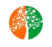 Símbolos irlandeses Imágenes de archivo libres de regalías
