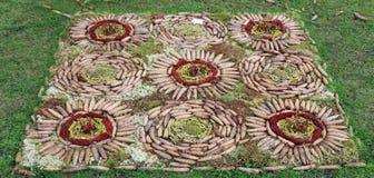 Símbolos místicos paganos y muestras de conos, de la corteza, de ramas y de a Fotos de archivo libres de regalías