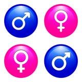 Símbolos masculinos y femeninos Imágenes de archivo libres de regalías