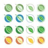 Símbolos naturales con la hoja Imagenes de archivo