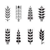 Símbolos para el sistema del icono del logotipo, iconos del oído del trigo de las hojas Foto de archivo libre de regalías