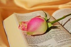 Símbolos religiosos Fotos de Stock Royalty Free