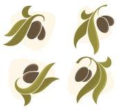 Símbolos verde-oliva Imagem de Stock Royalty Free