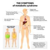 Síndrome metabólico Imagen de archivo libre de regalías
