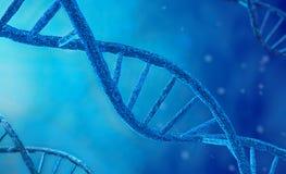 Síntesis de la DNA, de la réplica, de la modificación y del proceso de la mutación Concepto de brecha avanzada en biotecnología c fotos de archivo libres de regalías