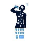 Síntomas infographic de la deshidratación del icono del agua de la bebida del ejemplo de la salud del cuerpo Fotografía de archivo