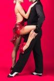 Sócios da dança em uma pose Imagens de Stock