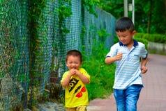 Sócios de Childhood do irmão Fotos de Stock