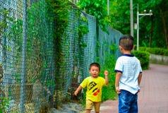 Sócios de Childhood do irmão Fotos de Stock Royalty Free