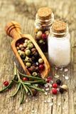 Sól i pieprz Fotografia Stock