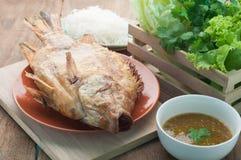 Sól piec na grillu ryba na talerzu i Mieszał warzywa, Korzenny jedzenie Zdjęcie Stock