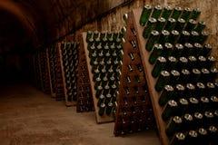 Sótano con el vino Imágenes de archivo libres de regalías