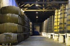 Sótano con los barriles de vino Foto de archivo libre de regalías