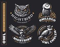 Sów logo ustawiać wektorowe ilustracje dekoracyjnego projekta emblemata graficzny ilustracyjny wektor royalty ilustracja