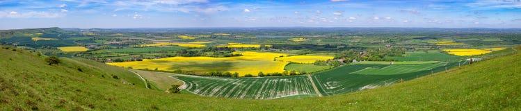 Söder för sommarfältpanorama besegrar Sussex sydliga England UK arkivfoton