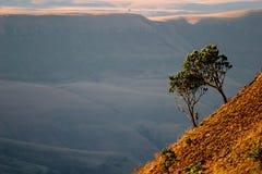 södra africa drakensbergberg Royaltyfria Foton