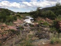 södra africa natur Royaltyfri Foto